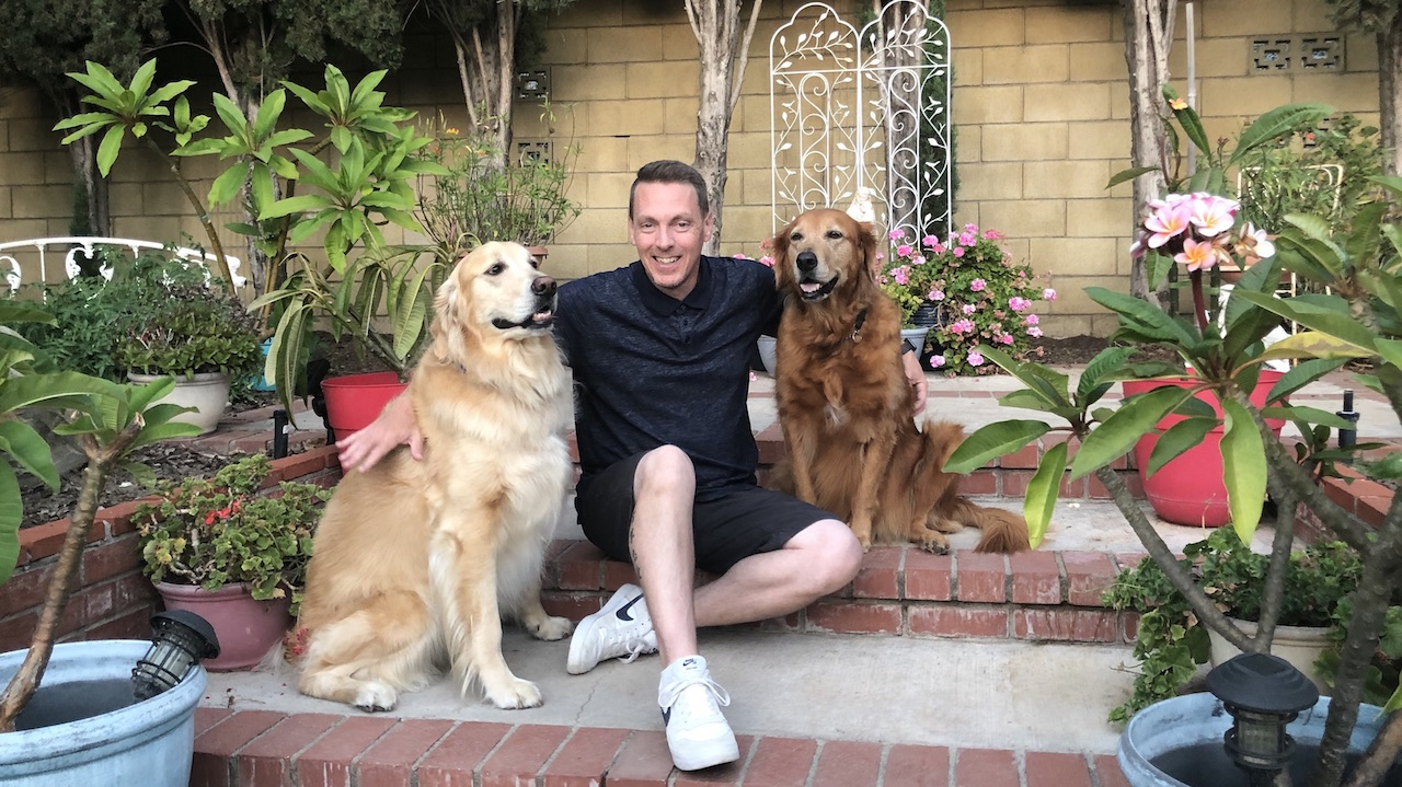 Thanks to these Goldens, I'm a Bark Buster!